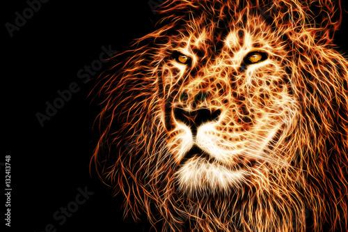 Zdjęcie XXL głowa lwa ilustracja tło