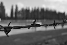 Campo Concentramento Dachau - ...