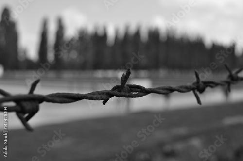 Valokuva  Campo Concentramento Dachau - Monaco