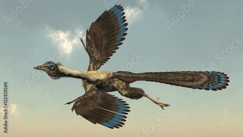 Fotografie, Obraz  Archaeopteryx birds dinosaurs flying - 3D render