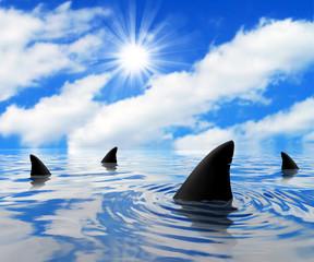 Panel Szklany Marynistyczny Shark on a Sunny Day
