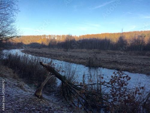 Landschaft am Fluss mit einem Baum, der von einem Biber gefällt wurde Wallpaper Mural