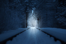 Narrow-gauge Railway In The Winter In Europe,  A Lone Traffic Light At An Abandoned Railway, Winter Day In The Taiga On The Railroad