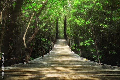 Canvas Prints Bridge Suspension bridge in the forest
