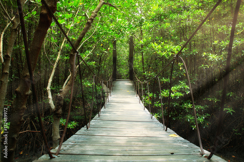 Tuinposter Bruggen Suspension bridge in the forest