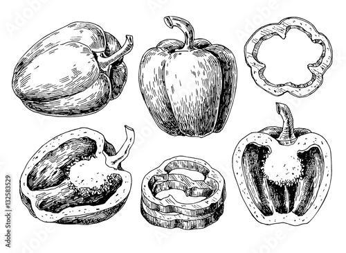 Fotografia, Obraz Pepper hand drawn vector set