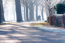 Horse And Cart On Road In Dutch Winter Landscape. Geesteren. Ach