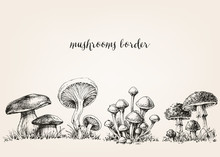 Cute Mushrooms Border, Hand Dr...