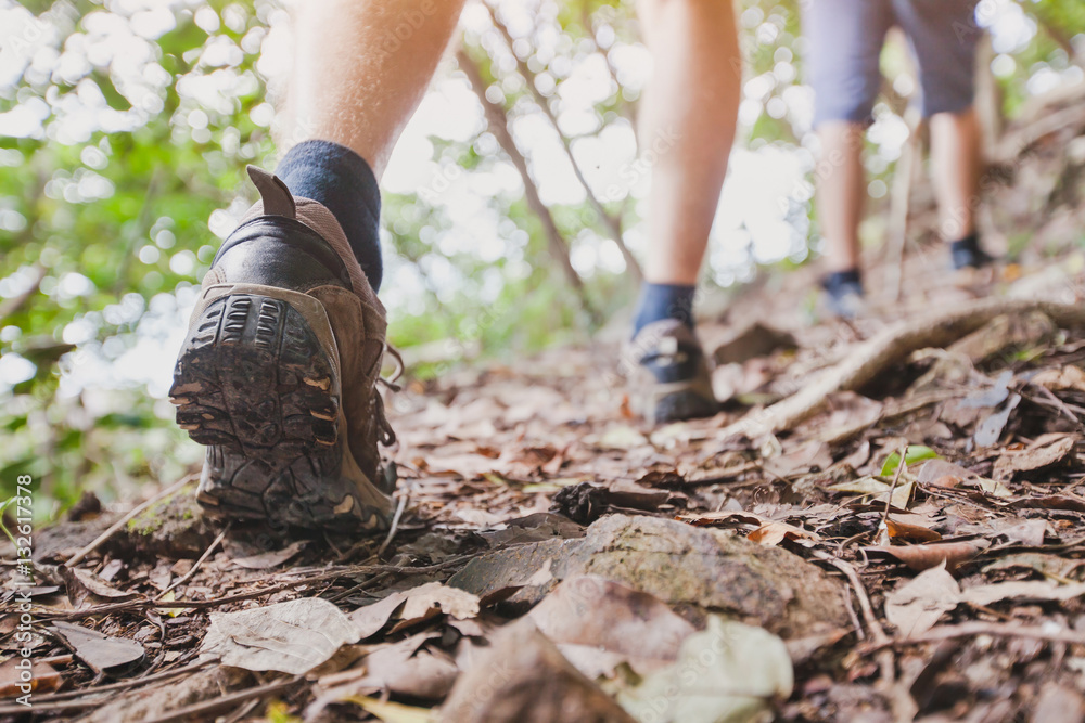 Fototapety, obrazy: jungle trekking, group of hikers backpackers walking together outdoors in the forest, close up of feet, hiking shoes