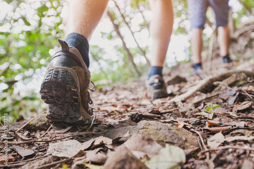 Fotografie, Obraz  jungle trekking, group of hikers backpackers walking together outdoors in the fo