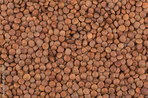 Aluminium Prints Firewood texture Picture of brown lentils over flat surface
