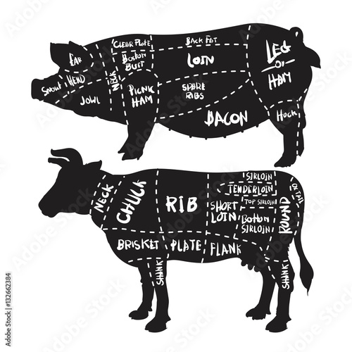 pork and beef cuts diagram and butchery set