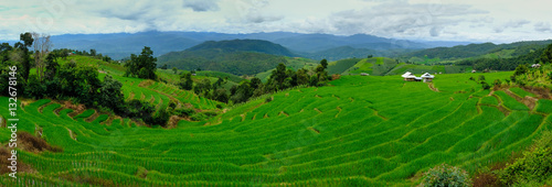 Poster Green Beautiful rice terraces at Ban Pa Pong Pieng, Mae chaem, Chaing