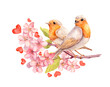 Birds on blooming branch with flowers. Watercolor