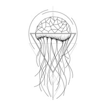 Vector Graphical Jellyfish Design.