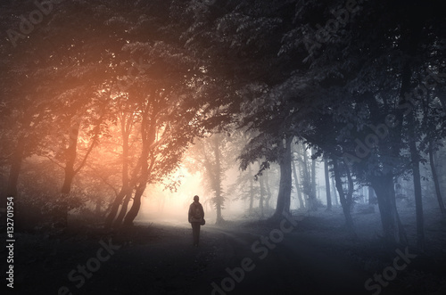 Plakaty Fantasy fantasy-forest-landscape-mysterious-surreal-light-in-gloomy-dark-forest-with-fog-between-trees-and-man-walking-on-natural-path