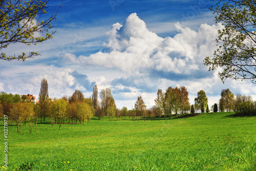 Spring landscape. Beautiful park with green grass field and clouds on blue sky.