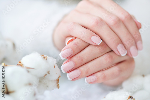 Fotografie, Obraz  Woman hands with beautiful French manicure holding delicate white cotton flower