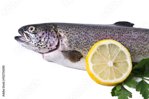 Photo  fish, fresh trout with lemon and parsley