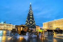 Christmas Tree And Carriage On Palace Square, St Petersburg, Russia