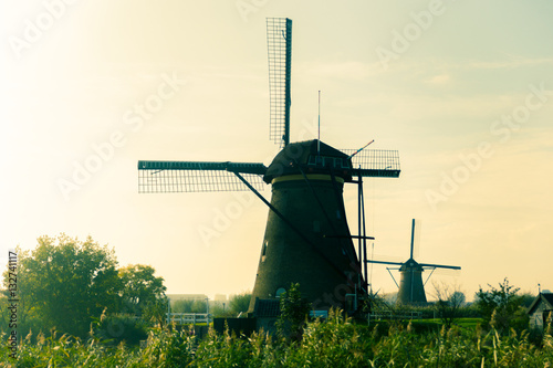 Traditional dutch windmills in countryside at Kinderdijk, Rotter Wallpaper Mural
