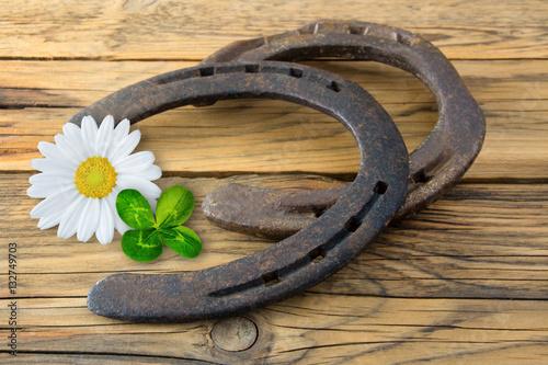 Photographie  Bonheur - décoration avec des fers à cheval
