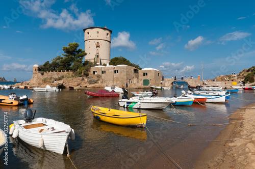 Fotografia Isola del Giglio, barche