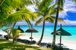Relaxing tropical scenery -beauti palm beach in Mauritius island