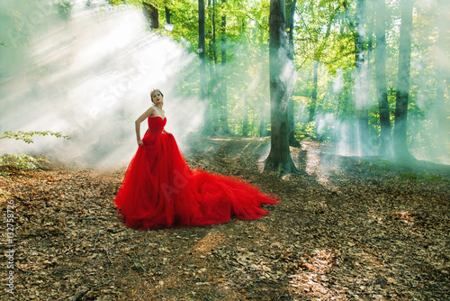 Fototapety, obrazy: A girl in a long red dress and a royal crown in the foggy forest