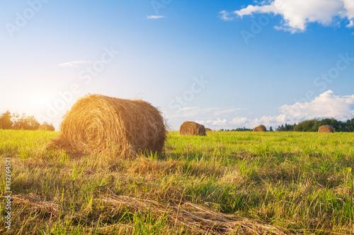 Foto auf Gartenposter Landschappen hay bales in a field