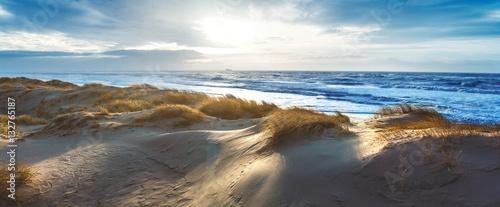 Foto auf Gartenposter Strand Dänische Nordseeküste