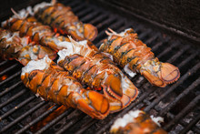 Freshly Grilled Delicious Lobsters. Lobster Bbq, No Claws. Street Food.