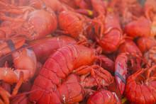 Freshly Boiled Lobsters. Food ...