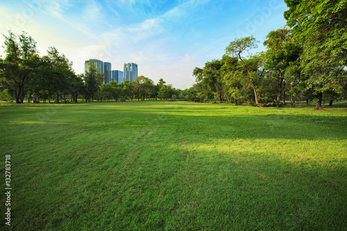 Papiers peints Jardin beautiful morning light in public park with grass field and gree
