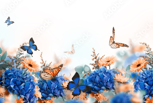 фотографія  Amazing background with hydrangeas and daisies