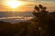 unrise with fog and cloud at Kew Mae Pan ,Doi Inthanon National Park, Thailand.