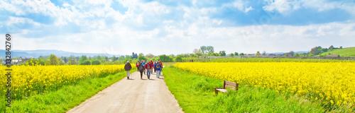 Deurstickers Geel Wanderweg im Frühling