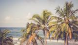 Palmy i błękitne niebo, Sri Lanka, retro panoramiczny - 132858995