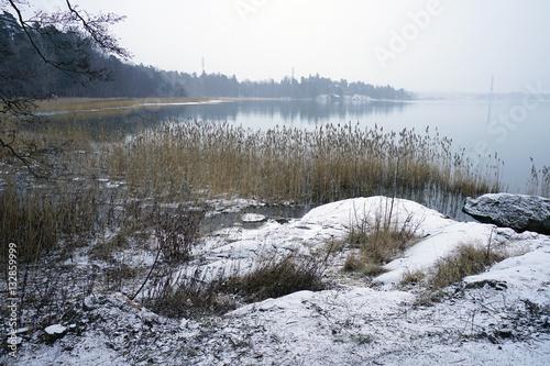 Fotografie, Obraz  Winter landscape with snow of the Seurasaari island (Folison) in Helsinki
