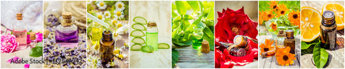 Fototapeta  collage of herbs and essential oil.