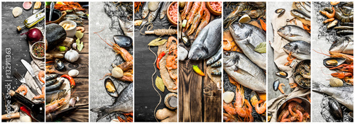Fotografia, Obraz Food collage of seafood .