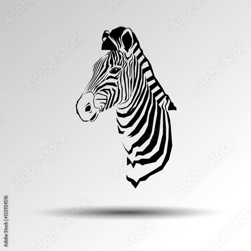 Poster Zebra animal zebra vector illustration wild mammal white