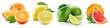 Leinwandbild Motiv Fruit compositions with leaves isolated on white background. Ora
