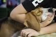 Собака породы бигль нежится в руках своего юного хозяина
