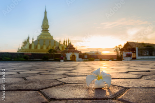 Foto op Plexiglas Xian Pha That Luang Stupa Vientiane
