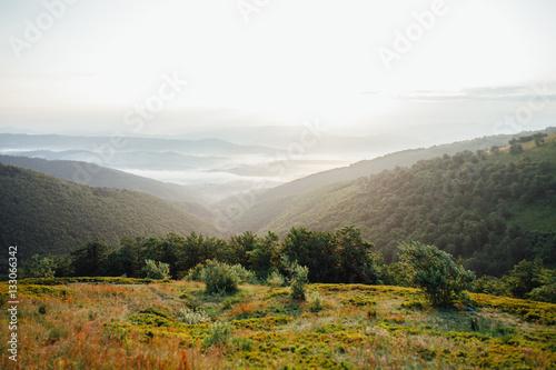 Fotobehang Wit ukrainian carpathian mountains. Beautiful mountain landscape.