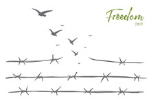 Vector Hand Drawn Freedom Concept Sketch With Broken Barbed Wire And Flock Of Birds Flying Over It