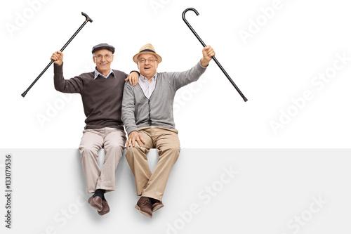 Fotografie, Obraz  Joyful seniors with walking canes sitting on a panel