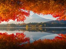 Mt.Fuji In Autumn,morning..