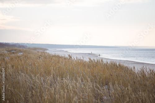 Cadres-photo bureau La Mer du Nord A beautiful landscape of dunes on the coastline of Baltic sea